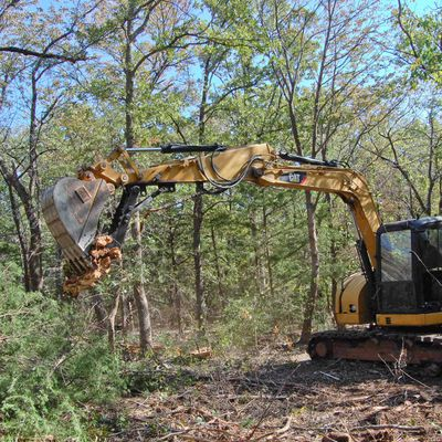 Stay Away from The Headaches of DIY Land Clearing