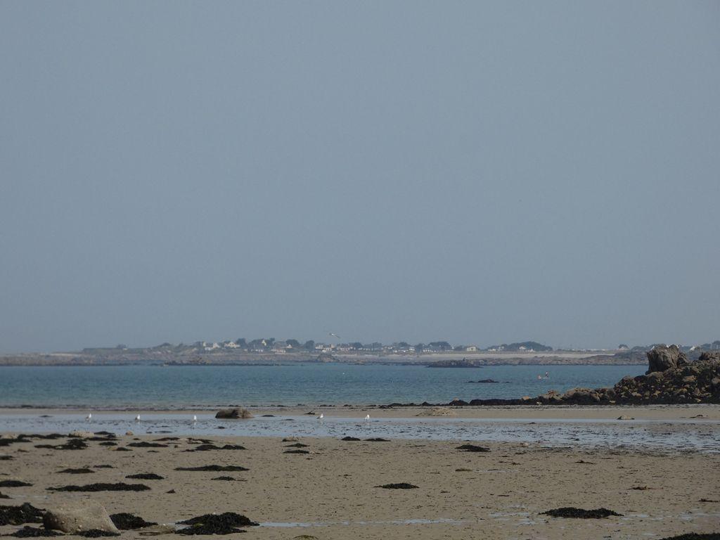 Un petit tour à la mer avant que la cage ne se referme