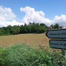 Course à pied : Haras, bord de Drôme, Mazorel