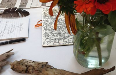 Salima Daily Video Reports from Stony Point Center : inside  and outside the Art Space Gallery