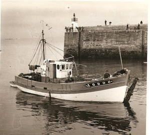 """Drole de pêche pour le """" BMJ"""""""