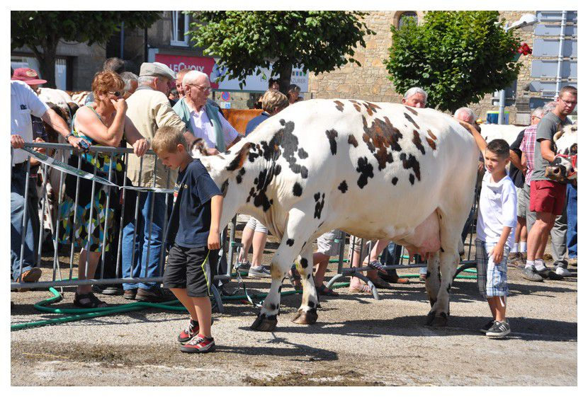 Des images de la Grand'Saint Pierre 2013, fête des Normands