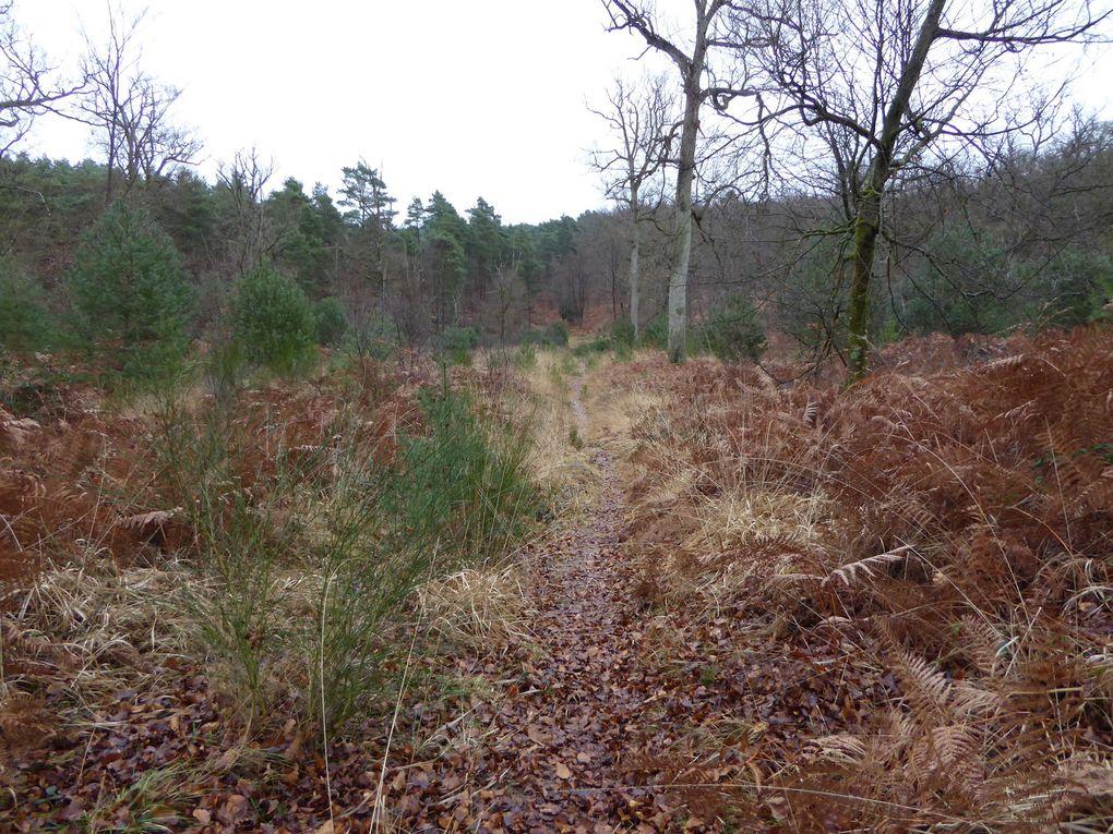 Toujours sur le GR13 près des carrefours des Oublis et des Adieux, nous devons passer des obstacles posés pour empêcher les gros animaux de passer et préserver la biodiversité des lieux.