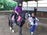 Stage Equestre Comines - 3 au 7 Aout