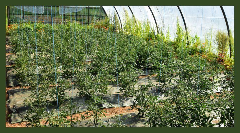 Les jardins de la Frégère