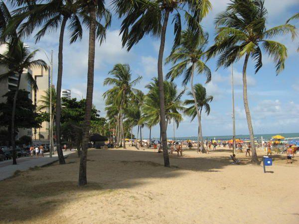 Album - 658-Recife-et-Olinda
