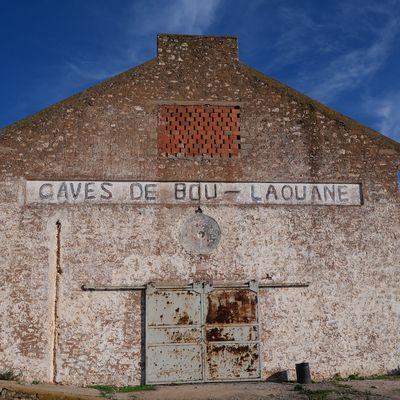 Boulaouane, son vin, sa kasbah.