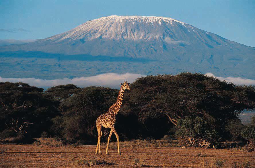 Tanzania en imágenes.- El Muni.