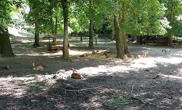 Communauté de communes du pays de Valois : Après la pollution du parc de Géresme