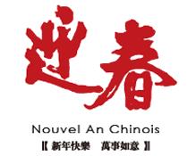 Nouvel an Chinois 2011 à Paris (photos couleur 1/2)