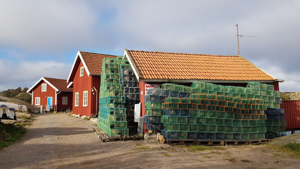 Magnifique côte du Bohuslän