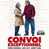 Les échecs des films francophones cette année 2019 dans les salles (1ère partie). - Leblogtvnews.com