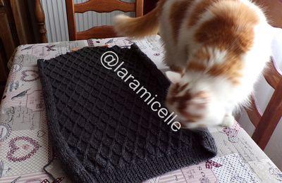 tricot   : mon en cours