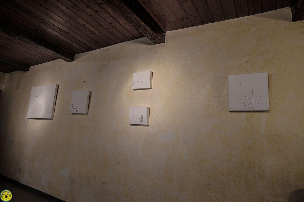 """Thorame Basse  : """"Perspectives brutes"""",  """"Questionner la Canadienne"""" rencontre avec Andrée Bélanger artiste multidisciplinaire"""