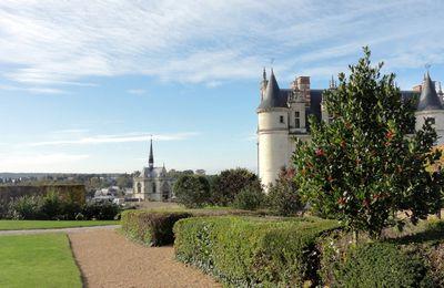 Arbustes du jardin du château d'Amboise