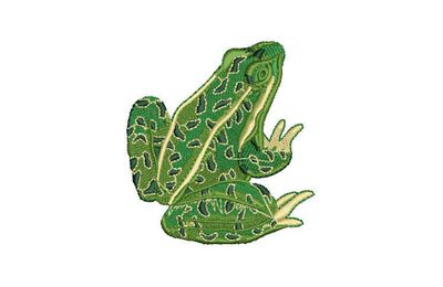 BRODERIE GRENOUILLE