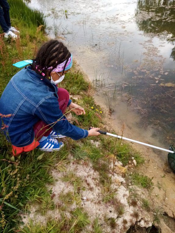 pêche à l'épuisette pour les CE1-CE2