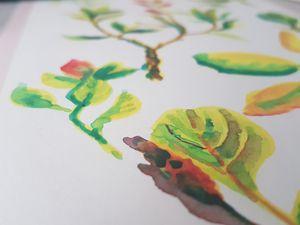 Dessins personnels / watercolor