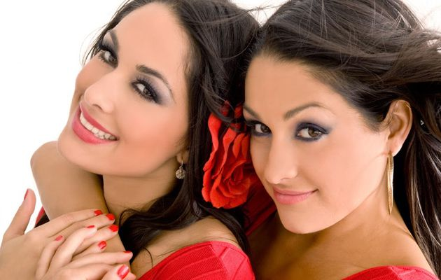 Bella twins 2013