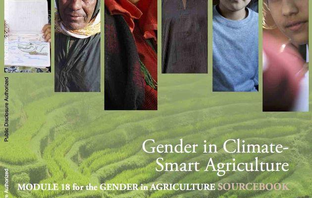 La place des femmes dans l'agriculture...