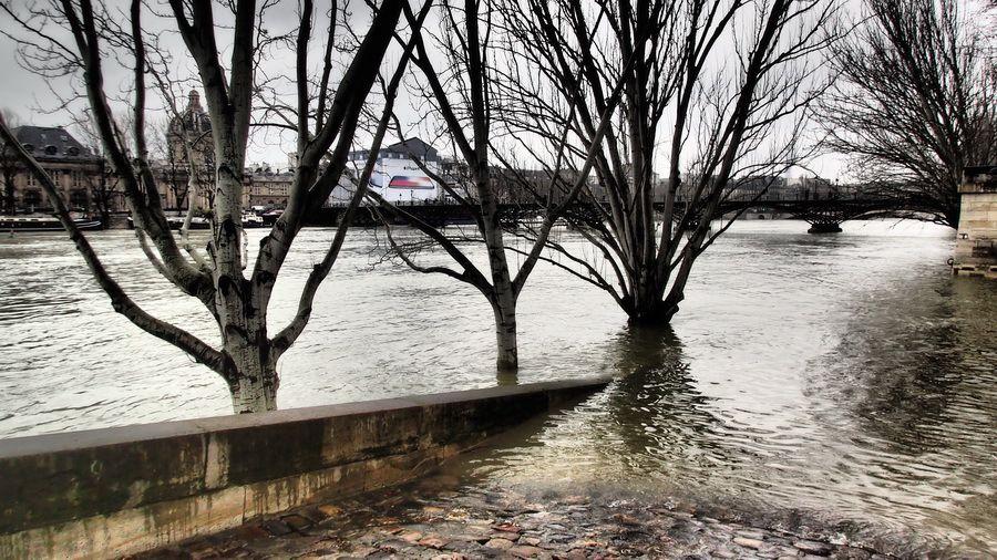Un autre regard sur la Seine par Philippe Pons