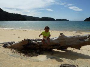 Parc Abel Tasman : Le rêve