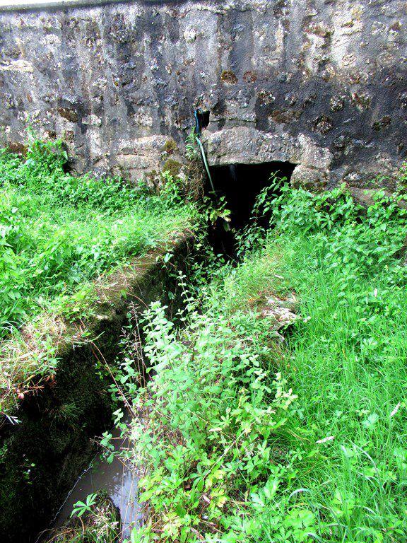Le lavoir de Bussac (17) les Guilloteaux - 22 juin 2021  - dans la verdure