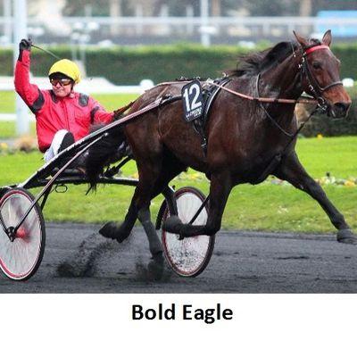 Bold Eagle, fils de Ready Cash, sur les traces de son père !