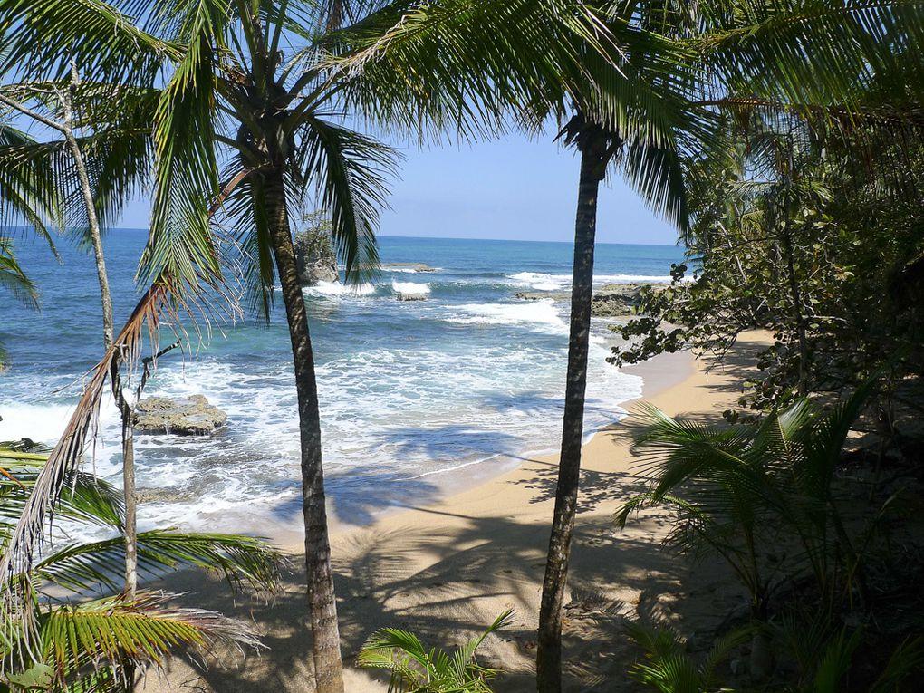 Album - Costa-Rica-et-foret-amazonienne
