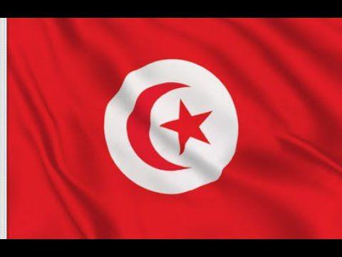 Sortie Tunisie étape 4/4 session plantée