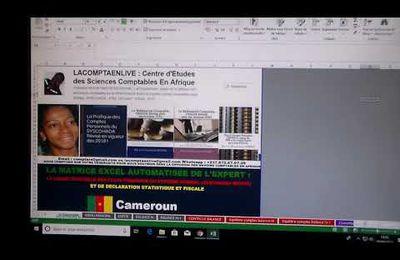CAMEROUN : LA MATRICE EXCEL AUTOMATISÉE DE LA DSF OFFICIELLE DU CAMEROUN