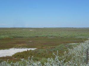 L'accès à l'espace détente et le paysage autour du phare.