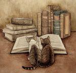 Vivre jeune dans un vieux livre