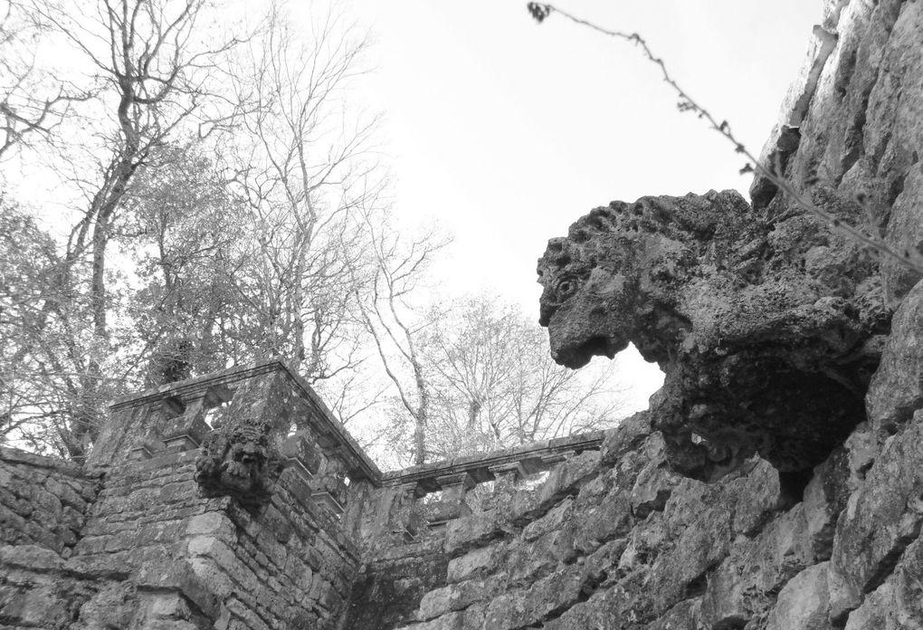 On ne peut que vous recomander la visite de ce site.. vous y trouverez aussi un musée et bien sûr à quelques-pas de là..... des vestiges des hommes de la  préhistoire.