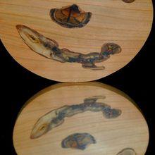 Les magnifiques couleurs d'un bois de garrigue épineux - première