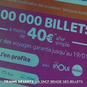 Trains déserts : la SNCF brade ses billets - Le Journal du week-end   TF1