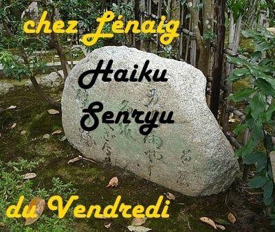 HAIKU -SENRYU CHEZ LENAIG- CONTES DE FEE