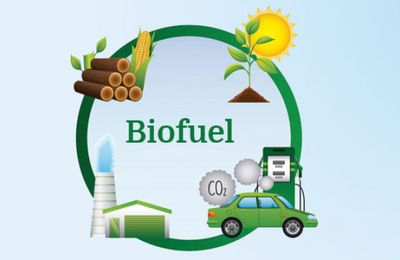 The Biofuel Testing and Analysis in Pune | Chem-Tech Laboratories