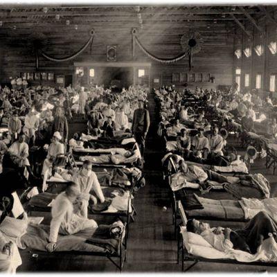 Histoire d'une pandémie