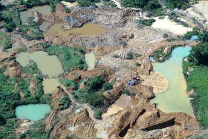 L'exploitation minière en Amazonie impacte largement la régénération des forêts