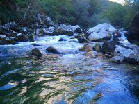 La rivière au dilemme
