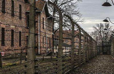 """""""27 gennaio 1945 – 2021. Auschwitz e i suoi figli"""", saggio di Stefano Bardi - Parte prima"""