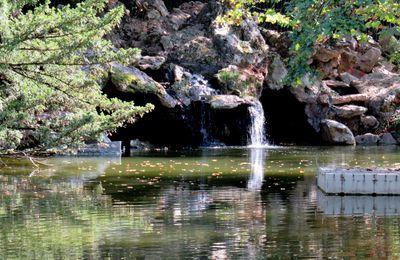Lac des Ibis, Le Vésinet (Yvelines), Mini-cascade et arbres morts