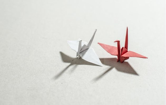 Origami diagrammes