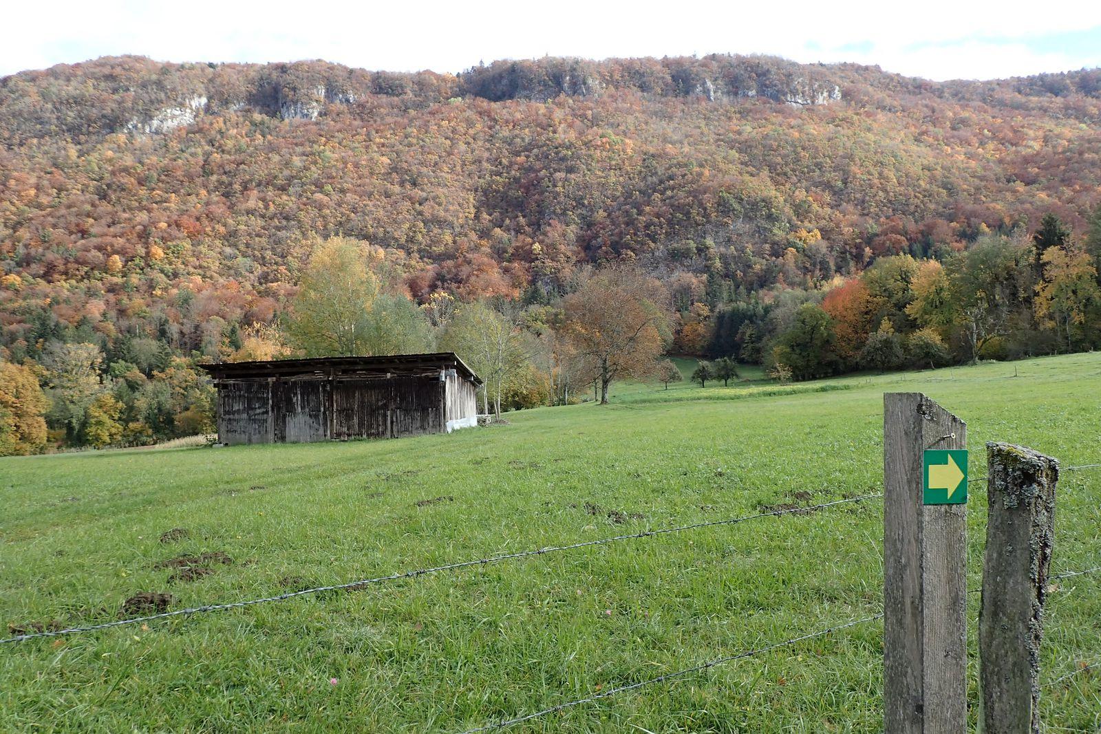 Contreforts du Semnoz : La Montagne de Vieugy