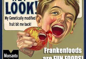 """"""" Una mamma contro Monsanto"""" di Duccio Facchini"""