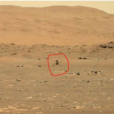 BBC - Science: Nasa successfully flies small helicopter on Mars